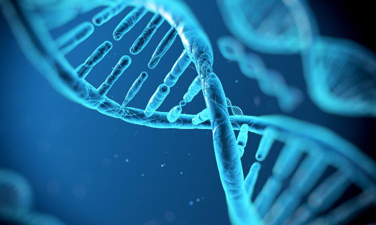 Grupo Latino Americano se posiciona en el mundo de la Genética Oncológica